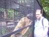 koala_sanctuary_brisbane087