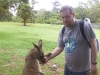 koala_sanctuary_brisbane159