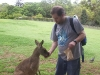 koala_sanctuary_brisbane161