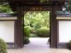 mt-cootha-botanical-gardens22
