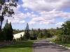 mt-cootha-botanical-gardens69