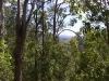 mt-coot-tha-lookout003