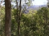 mt-coot-tha-lookout011