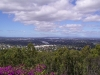 mt-coot-tha-lookout022