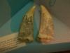 brisbane_museum044