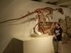 brisbane_museum057