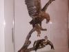brisbane_museum085