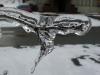 eku_ice_storm_38