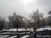eku_ice_storm_42