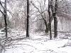 eku_ice_storm_60