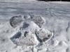 eku_snow44
