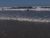 gold-coast-surfers-paradice29
