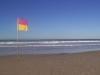 gold-coast-surfers-paradice31