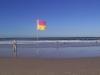 gold-coast-surfers-paradice33