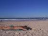 gold-coast-surfers-paradice38