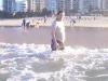 gold-coast-surfers-paradice47