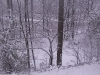 ellis_2nd_snowfall087